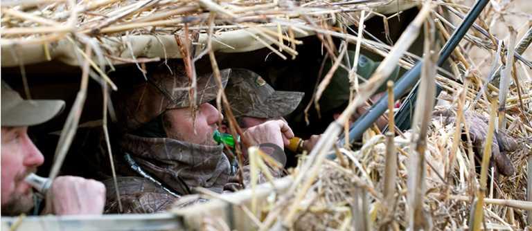 Build A Better Duck Blind