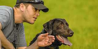 An ounce of prevention is worth a pound of cure when it comes to caring for your retriever.
