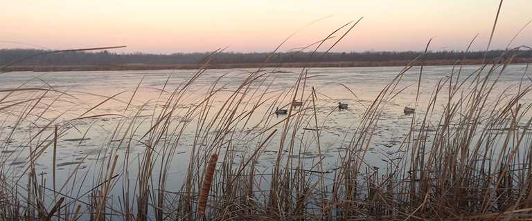 Ducks Unlimited helped make Dunes Lake healthier for waterfowl and easier for recreation.