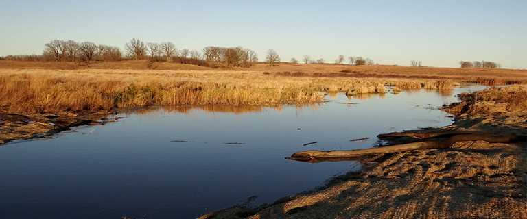 Kruger Waterfowl Protection Area