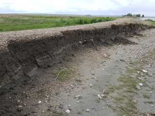 Washed out section of dike that was repaired.