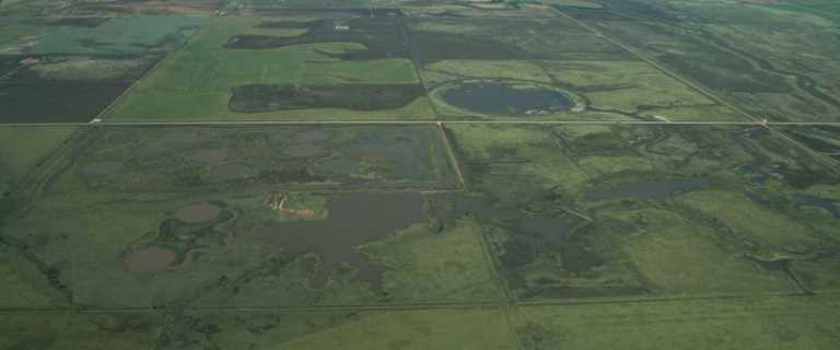 This historic wetland basin will be managed for waterfowl.