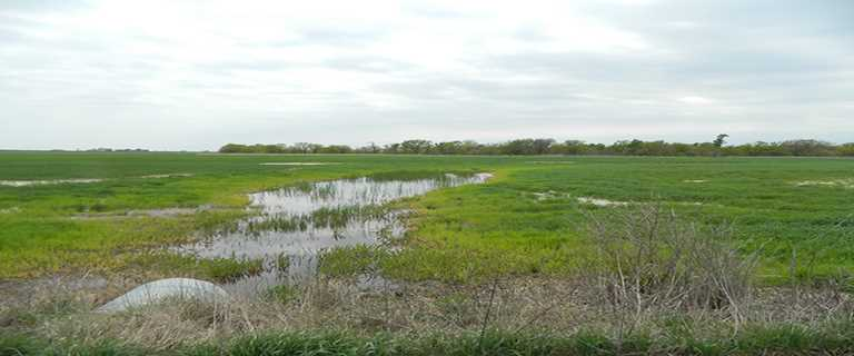 DU can assist Kansas private landowners with conservation projects.