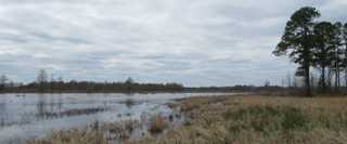 Santee National Wildlife Refuge