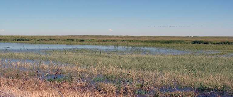 Brush, Colorado, wetland recharge project