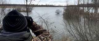 A participant watches ducks at a previous Maple River Migration Tour.