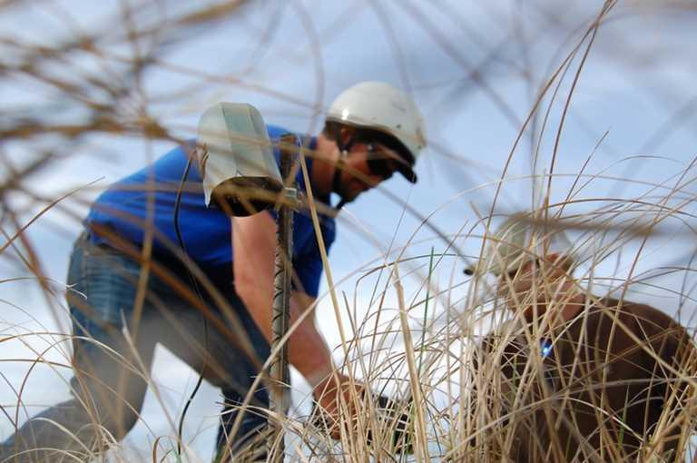 2018 Interns set up a camera at a Mallard nest site