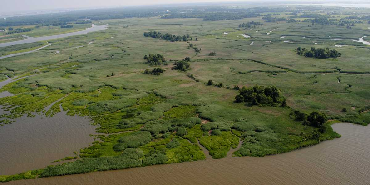 This 121-acre tract of land will become part of Supawna Meadows National Wildlife Refuge.
