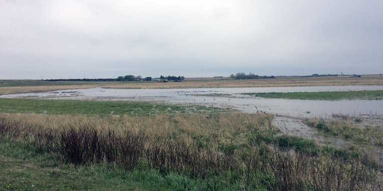 Lake Seldom helps filter water and provide flood protection for Holdrege