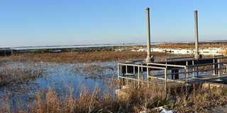 DU to update Infrastructure to restore Cheyenne Bottoms Wetland