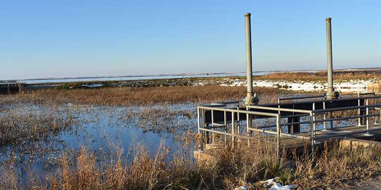 DU to update Infrastructure to restore Cheyenne Bottoms Wetland