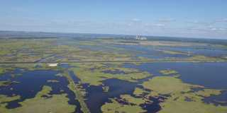 Coastal marsh provides important community and infrastructure protection as well as waterfowl habitat.