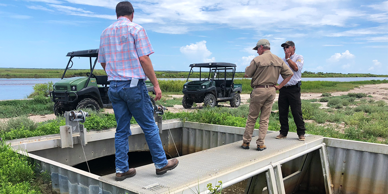 DU designed and replaced a water-control structure and repaired a levee that were damaged by hurricanes on the Texas Chenier Plain.