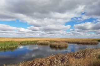 Cheyenne Bottoms is recognized as important habitat for migrating birds.