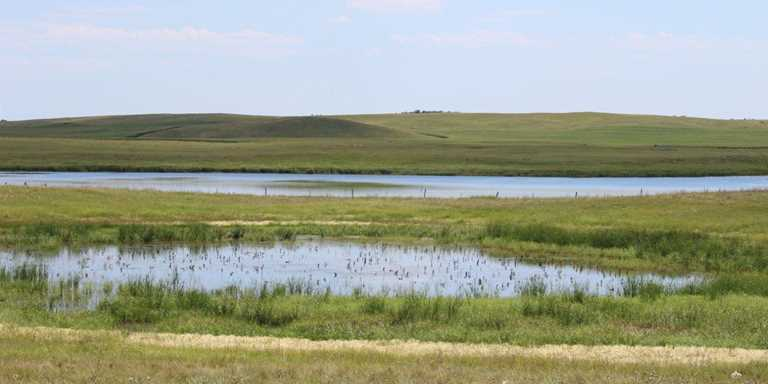 North Dakota Christmas in July raffle helps keep Ducks Unlimited conservation moving forward.
