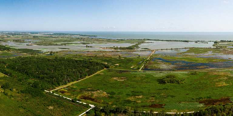 Ottawa National Wildlife Refuge is an example of coastal wetlands on Lake Erie.