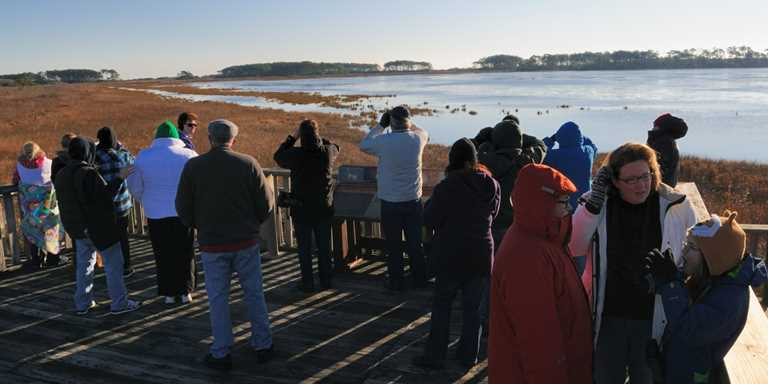 Observation deck at Chincoteague NWR.