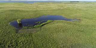 Restoring wetlands helps communities and wildlife