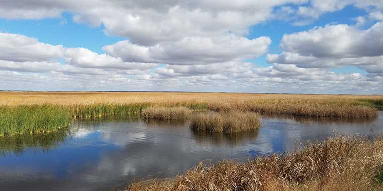 Ducks Unlimited improving habitat in Kansas