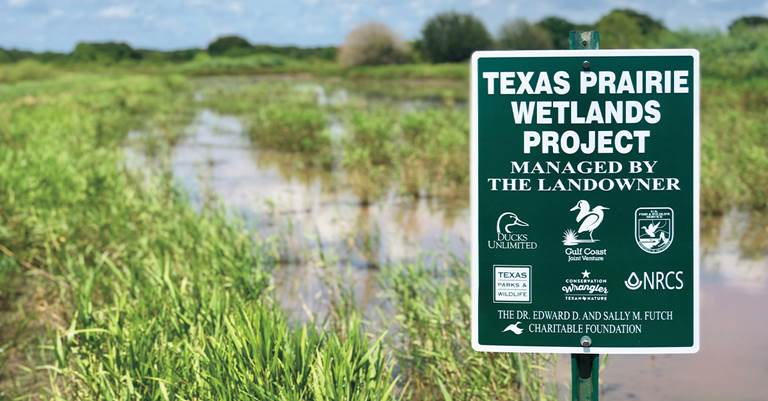 The foundation has helped conserve thousands of acres of wildlife habitat in Texas and Mexico.