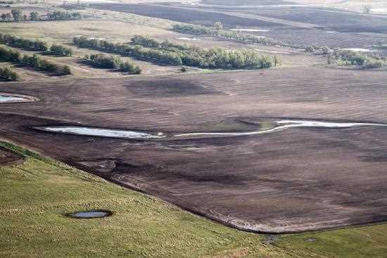 Drainage of wetlands, such as these shallow potholes in North Dakota, remains the greatest threat to healthy populations of waterfowl.