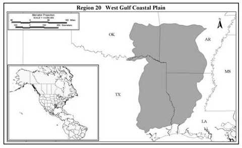 West Gulf Coastal Plain - More Information