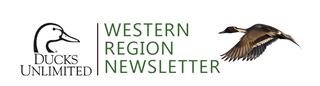 WRNewsletter