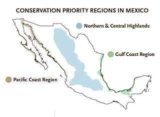 uwfJF17_Mexico