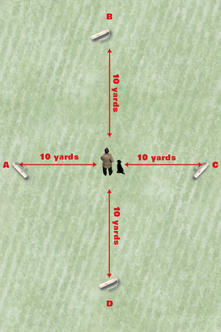Diagram3_SummerDrills