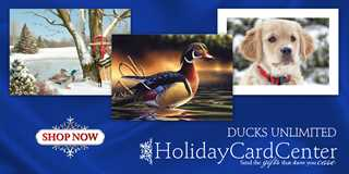holidayCards2017