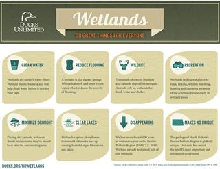 WetlandsInformation