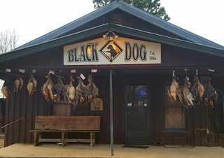 ads-black-dog