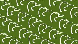 green-multiple-logos-th